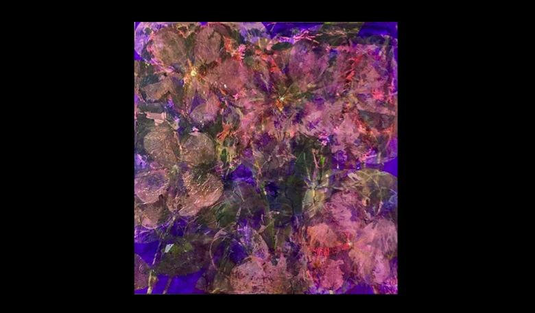 Fiori-Rosa-120x120