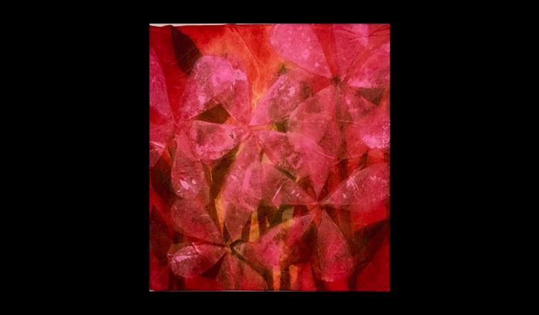 Fiori-Rosa-cm20x20