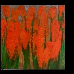 tulip-rossi