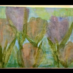 tulipani-chiari